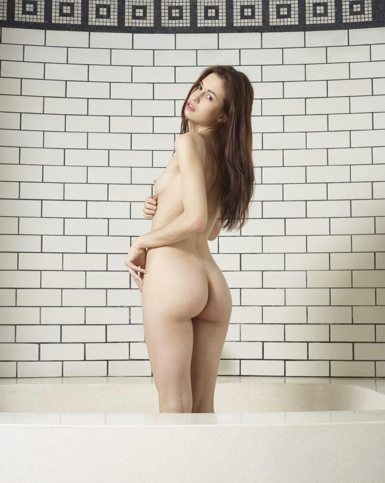 slender brunette lilian from hegreart striking a formidable nude pose picture