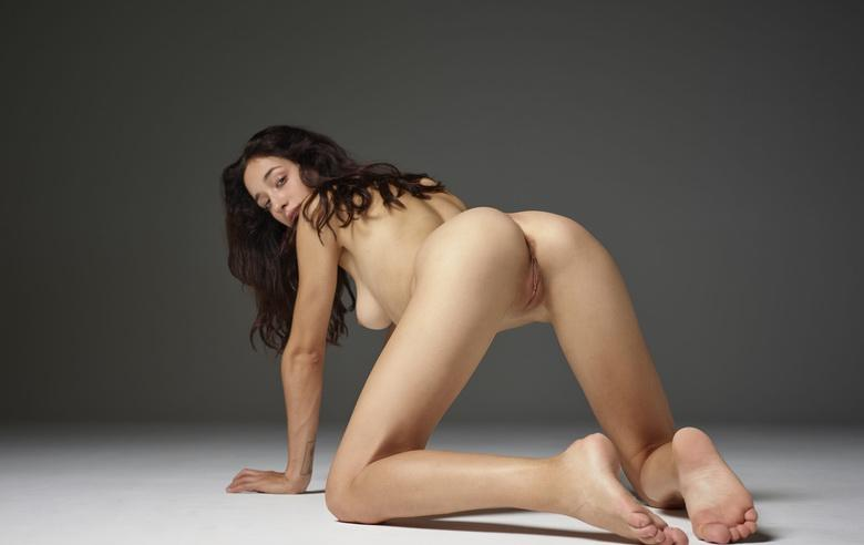 kneeling wonderful brunette girl with wonderful proportions exposing her tiny slit - hegre picture