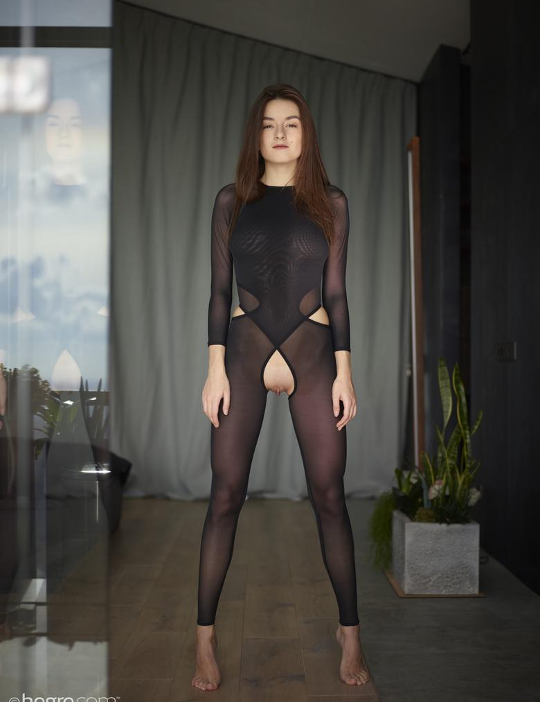 the sexiest legs in town – hegre beauty with crotchless nylons posing  #11