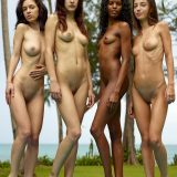 nice group shoot with a bunch of nude skinny models from hegre art picture 3