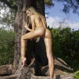 russian athletic girl nude in the forrest from hegre fantasies picture 11
