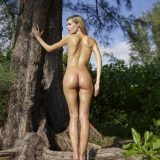 russian athletic girl nude in the forrest from hegre fantasies picture 3