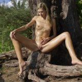russian athletic girl nude in the forrest from hegre fantasies picture 15