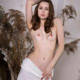 ginger frosts perfect shaped labia picture 7
